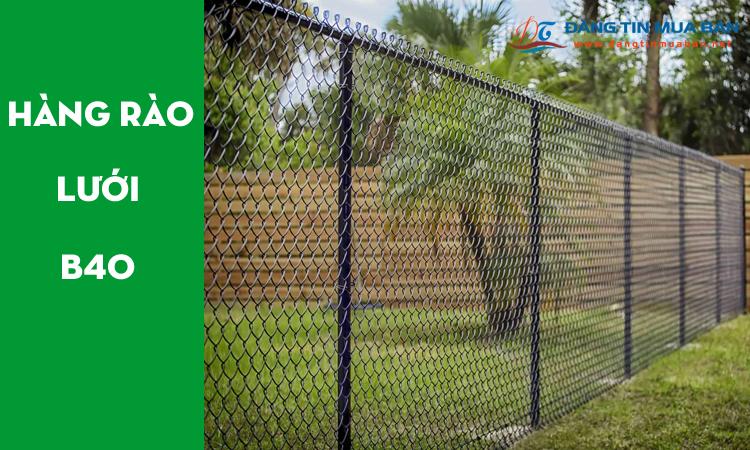Mẫu hàng rào lưới b40